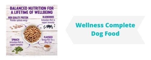 Wellness Complete Dog Food